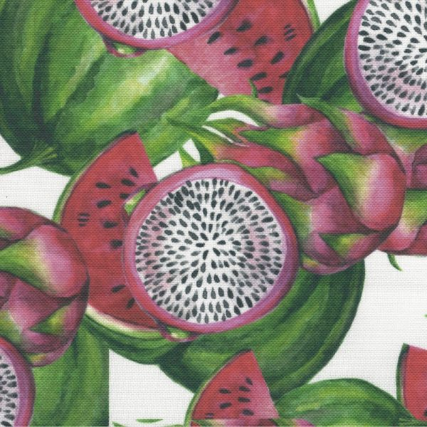 House of Canvex Dragonfruit